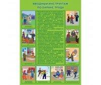 Брошюра «Инструкция по проведению вводного инструктажа по охране труда»
