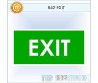 Знак «EXIT», B42 (пластик, 300х150 мм)