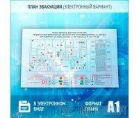 План эвакуации в электронном варианте (A1 формат)